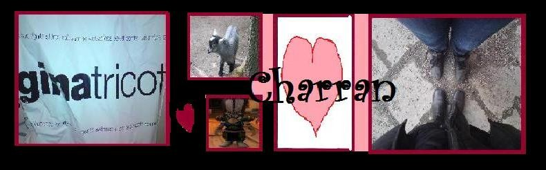 Charrans Blogg